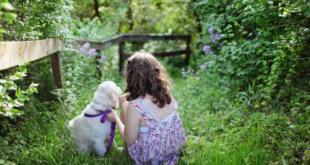 Kind mit Hund 310x165 - Baby und Haustier - so werden beide zum Dreamteam