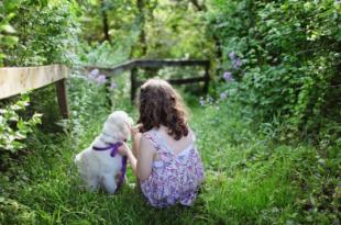 Kind mit Hund 310x205 - Baby und Haustier - so werden beide zum Dreamteam