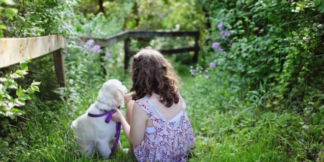 Kind mit Hund 660x330 - Baby und Haustier - so werden beide zum Dreamteam